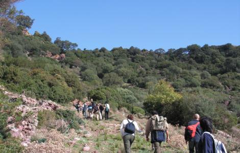 Trekking verso Monte Mannu, tra Bosa e Montresta