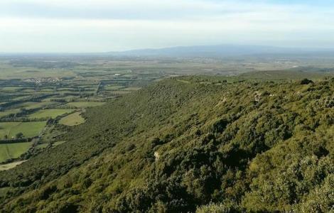 Panorama da Vedetta di Sedda 'e Anea
