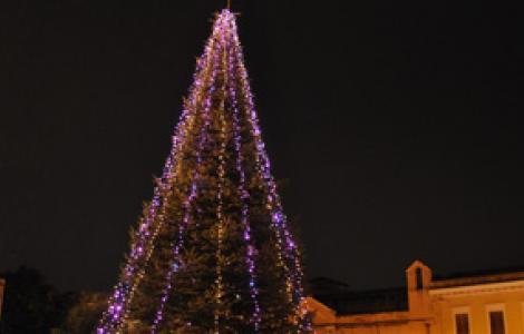 L'abete in piazza Duomo a Oristano, natale 2010
