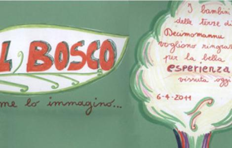 il Bosco come lo immagino....