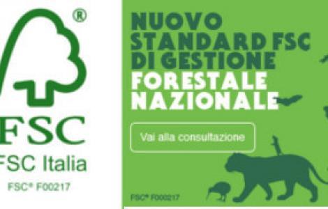 logo e banner FSC