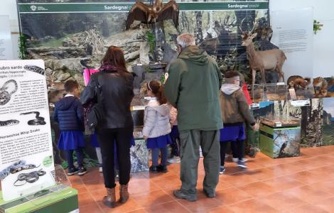 allestimento mostra itinerante in una scuola (foto Pierpaolo Mocci) 3