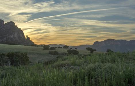 Pascolo al tramonto, tacchi d'Ogliastra (foto C.Mascia)