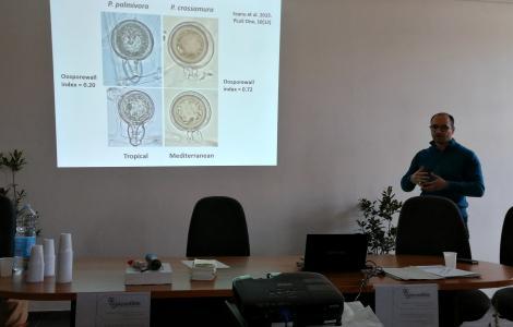 seminario Pytosphora Intense . 2