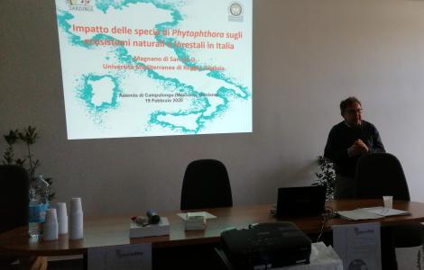 seminario Pytosphora Intense