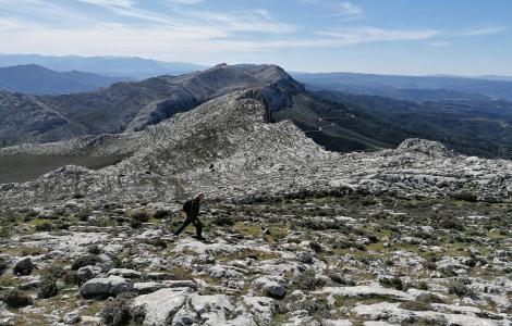 Sulle creste del Montalbo (foto Alessio Saba)