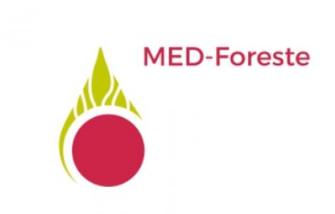 logo MEd foreste