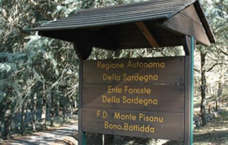 Monte Pisanu