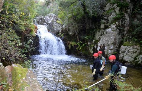 operazioni sul Rio Salauna alto