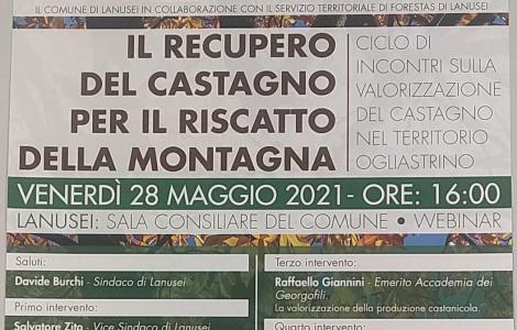 locandina webinar recupero castagno lanusei 28.5.21