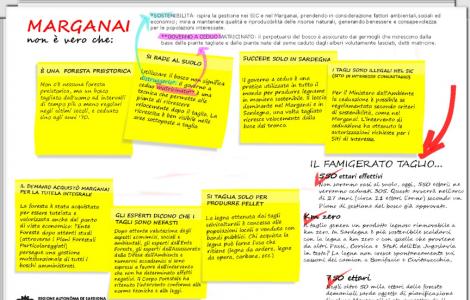 infografica marganai