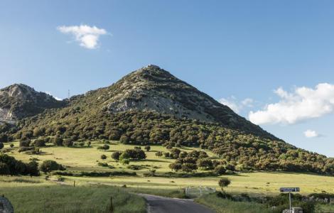 sarule_cv8623_ambiente_monte_gonare (immagine da SardegnaTurismo)