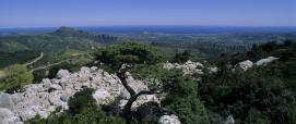 Panorama dal Monte Albo a Siniscola - foto Sardegna Digital Library