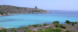 Asinara - Cala d'Arena