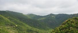 Foresta Pixinamanna dal sentiero Cascata di Sa Spendula (Pula)