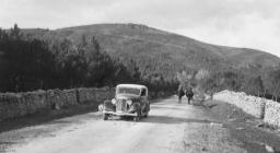 Foto storiche - Monti, foresta di Monte Olia anni '50