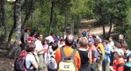 Foreste Aperte, i sentieri escursionistici
