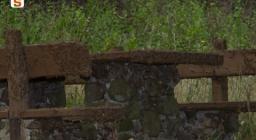 bosco di Pau invaso dai bruchi di defogliatori - foto a cura del S.T. di Oristano
