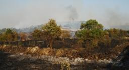 Terreno percorso dal fuoco