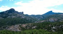 Foresta di Montes, panorama - foto HorusFilms