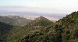 Monte Arci