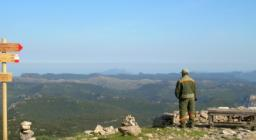 Foreste Aperte, vista da uno dei sentieri escursionistici a Montarbu (seui)