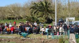 un milione di nuovi alberi - Paulilatino - messa a dimora di 600 piante - leccio, corbezzolo, mirto e rosmarino