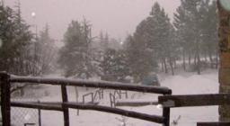 nevicata invernale a Terranova