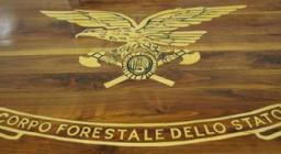 stemma corpo forestale dello stato