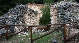 Un albero cresciuto all'interno di una antica fornace per la calce, presso il perimetro di Funtanamela