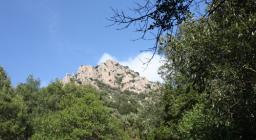 Graniti a Montimannu