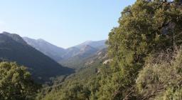 Vista verso Monte Linas