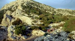 Monte Albo, Punta Catirina