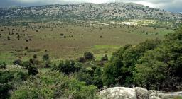 Supramonte di Orgosolo, campu Donanigoro