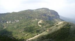 Vista della foresta di  Montarbu da Perda liana  (da Digital Library)