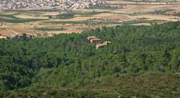 Foresta Demaniale Campidano