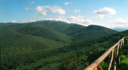Foresta demaniale Campidano, sentiero che sale a Bruncu Mogumu