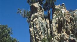 Arzachena, massiccio di granito con ginepro fenicio