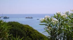 Oleandri ed il mare di Pòglina, Villanova Monteleone
