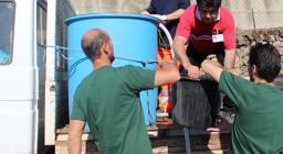 Trasporto delle trote sarde verso i siti di rilascio