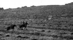 Foresta Anela, foto storiche