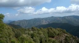 Vista da punta Calamixi, Is Cannoneris