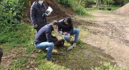 sorveglianza fitosanitaria vivaio sorgono 3