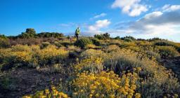 Monte Maxia: lassu si può osservare tutta la Sardegna del sud