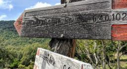 Cartelli presso bosco Tostoinus