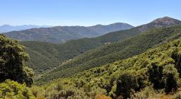 i panorami del Linas, lungo le alte vie dei sentieri (foto A.Saba)