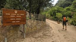 Uno dei sentieri della RES: presso la Foresta Demaniale di M.Nieddu