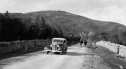 Monti, foresta di Monte Olia (Foto SardegnaDigitalLibrary)