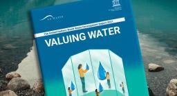 report ONU sull'Acqua 2021