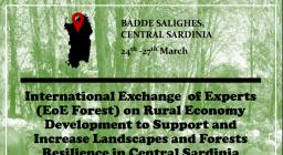 locandina Badde Salighes